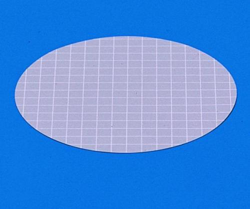 Membraanfilters cellulosenitr. 0,45 µm, Ø 50 mm, niet-steriel (20617708)
