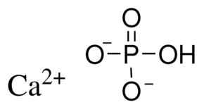 Calcium Phosphate Dibasic 98-105% (C7263-100G)