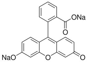 Uranine AP(C.I. 45350) geconc. voor onderzoek ondergr. water (MERC1.08462.0100)