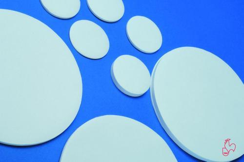 Rondfilters Ø 185 mm, FP 604 79 g/m2, 12–25 µm, 0,19 mm dik (20111185)